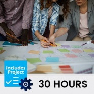 Hybrid School Planning (30 Hours, includes project)