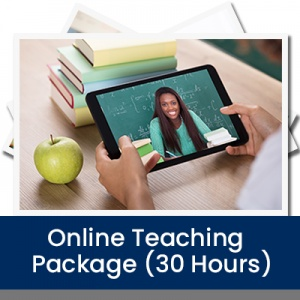 Online Teaching Package (30 Hours)